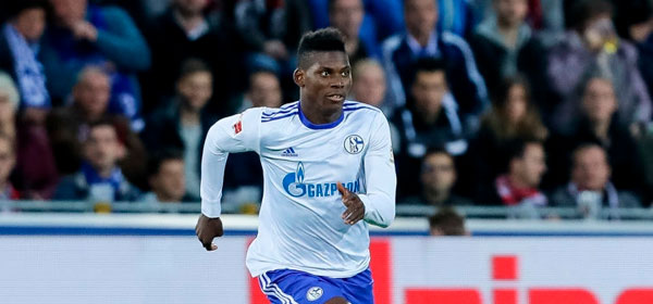 Schalke-Hamburger-19.11